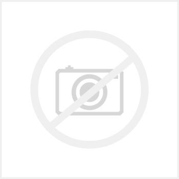 Dell P1917S-WOST 19 INCH No Stand 5:4 IPS HDMI